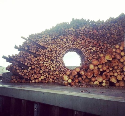 logs,design,wood,nifty