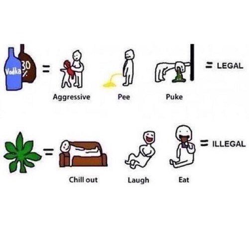 beer,happy,illegal,weed,funny