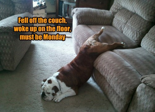 Fell off the couch, woke up on the floor, must be Monday