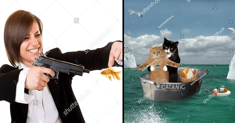 Funny stock photos, weird stock photos.
