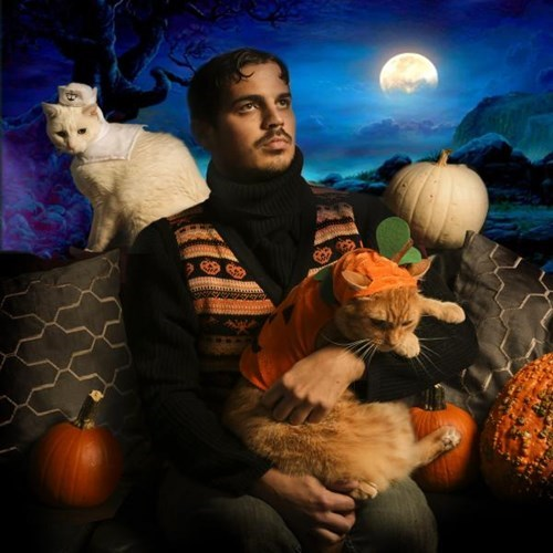 poorly dressed halloween Cats g rated - 8350007040