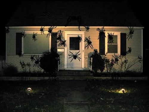 spiders halloween - 8350008320