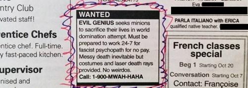 monday thru friday minions classified ad job hunt g rated - 8350071552