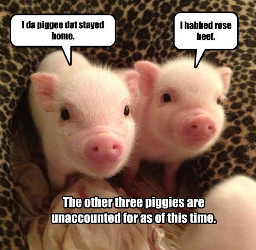 baby animals pig squee three little pigs - 8350135808