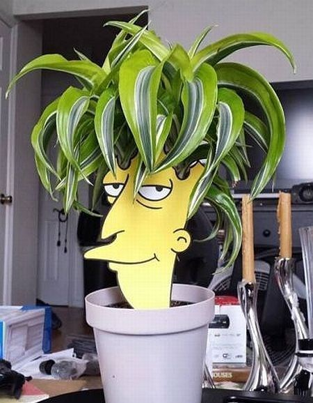 garden hacked irl Sideshow Bob the simpsons - 8350212864