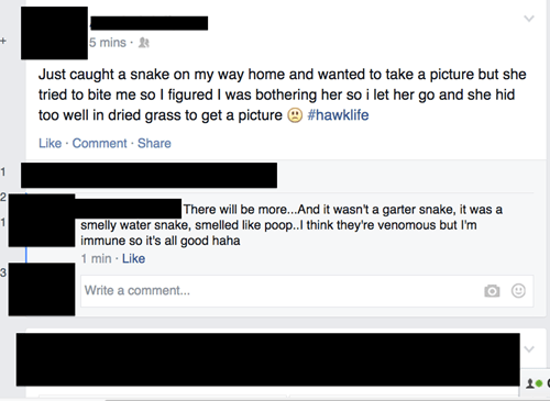 tough guy,animals,we got a badass over here,snake,failbook