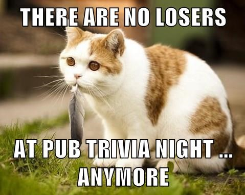 THERE ARE NO LOSERS AT PUB TRIVIA NIGHT     ANYMORE - Lolcats - lol