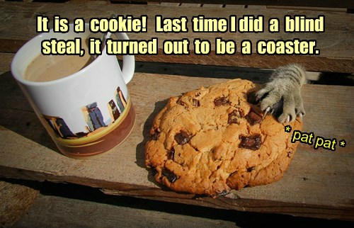 Cats cookies thief Nailed It