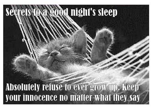 NCcharmer.com - Secrets to a good night's sleep Series
