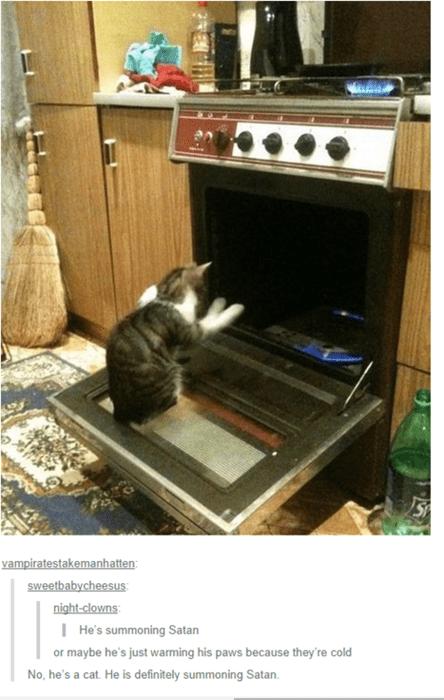 satan,Cats,oven