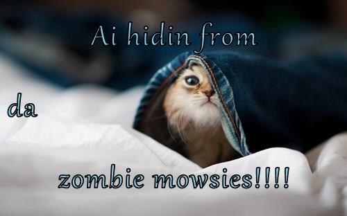 Ai hidin from da zombie mowsies!!!!