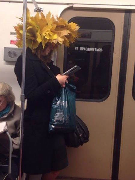 fall,hat,leaves,poorly dressed,Subway