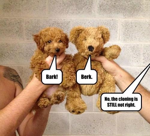 bear clone stuffed animal teddy bear - 8351631104