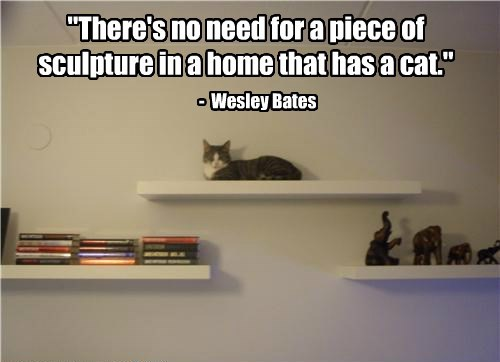 """There's no need for a piece of sculpture in a home that has a cat."" - Wesley Bates"