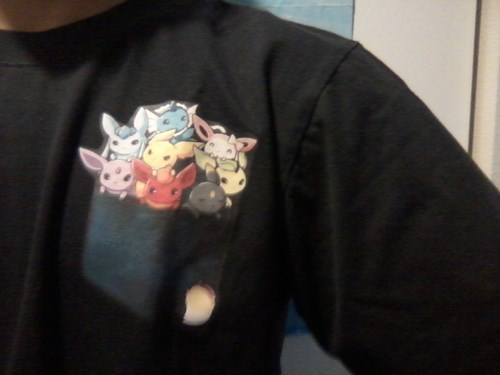 To the guy with the cute Pikachu shirt. I raise you my Eeveelution one.