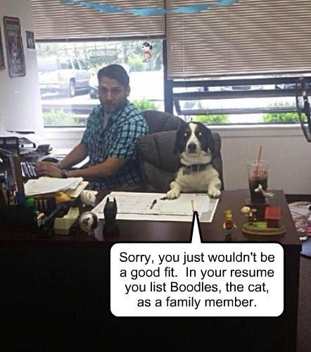 work sucks interview - 8353600256