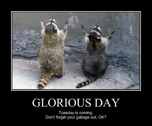 GLORIOUS DAY Tuesday is coming. Don't forget your gabage out, OK?