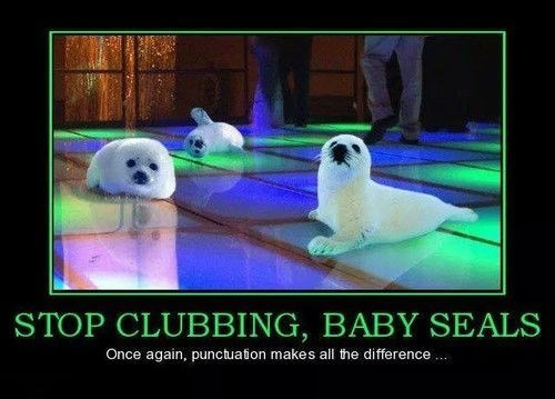 grammar,seals,clubbing,punctuation,funny