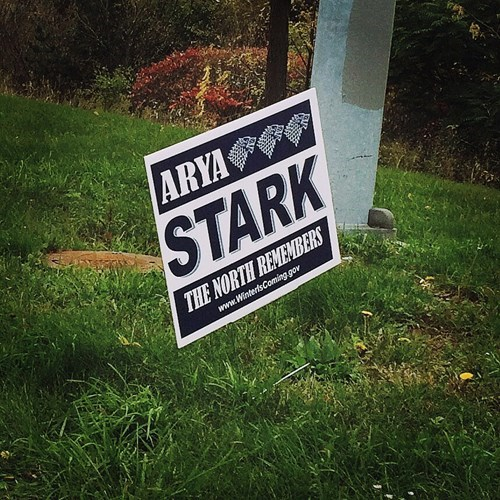 arya stark elections Game of Thrones politics Winter Is Coming