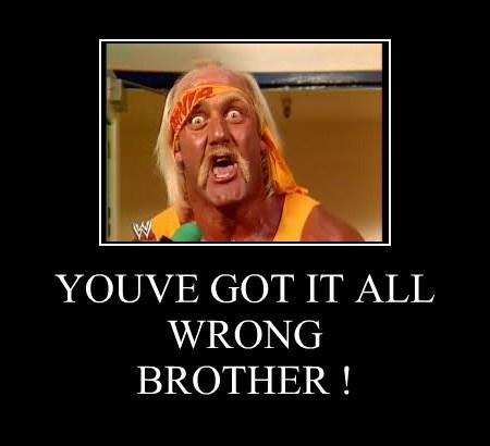 funny Hulk Hogan wrestling wtf - 8354384640