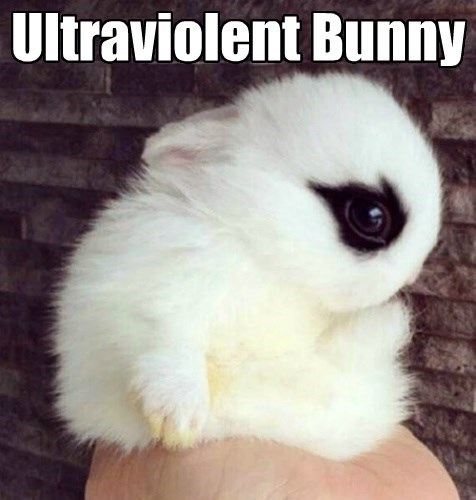 baby animals bunny squee clockwork orange - 8355153920
