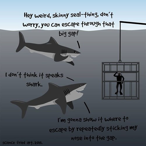 cages,sharks,shark week,web comics