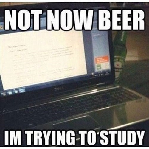 beer,college,funny,studying