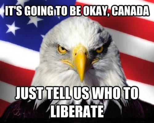 Canada freedom murica eagle - 8356048896