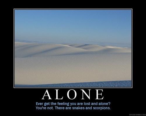 scorpions,desert,snakes,alone,funny