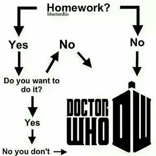 doctor who,flowchart,homework