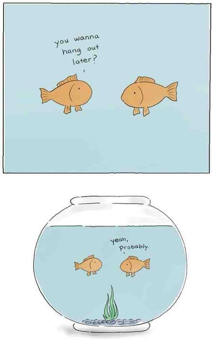 aquarium fish roommates web comics - 8356180992