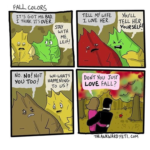 fall leaves seasons web comics