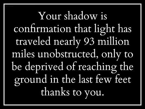 shadows sunlight - 8356924160