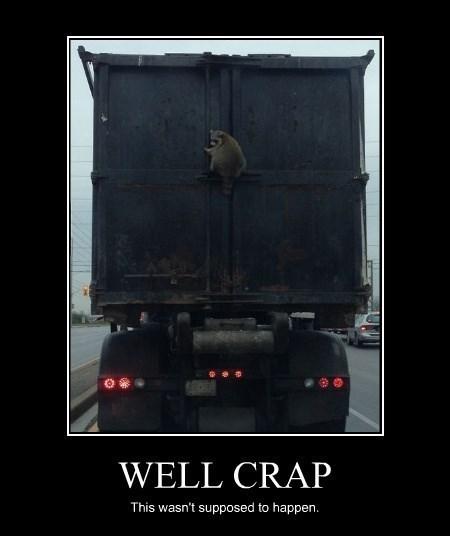crap,funny,truck,raccoon