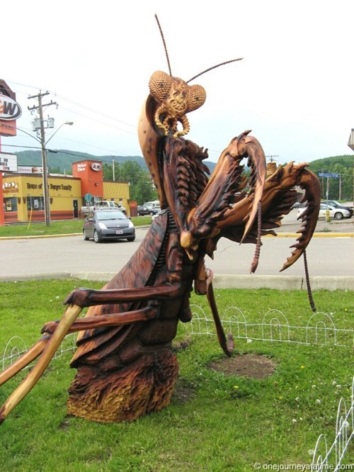 chainsaw art praying mantis carving g rated win - 8357413888