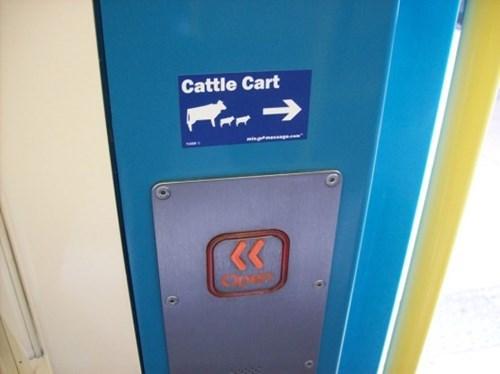 Machine - Cattle Cart L