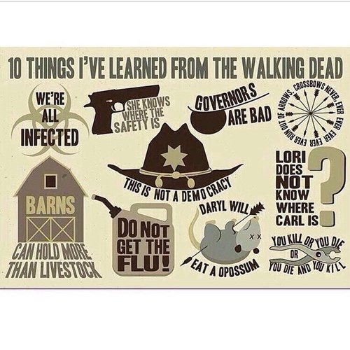 life lessons The Walking Dead - 8358425600