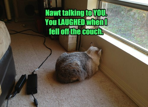 Nawt talking to YOU. You LAUGHED when I fell off the couch.