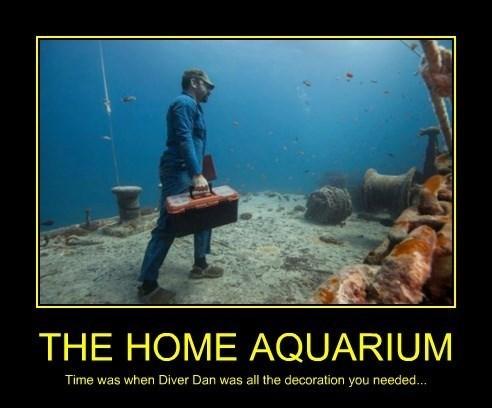 aquarium decoration home funny - 8359358464
