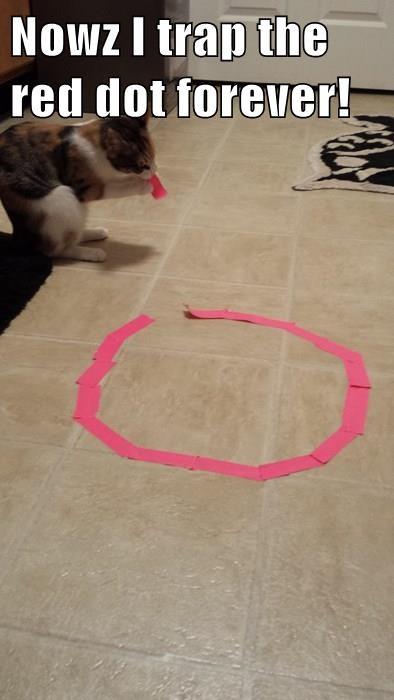 animals Cats hobby red dot magic circle - 8359856640