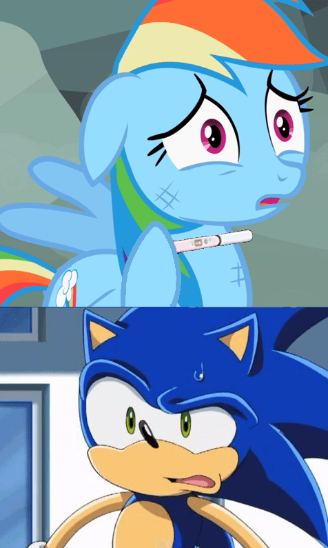 pregnancy test puns rainbow dash sonic - 8359988736