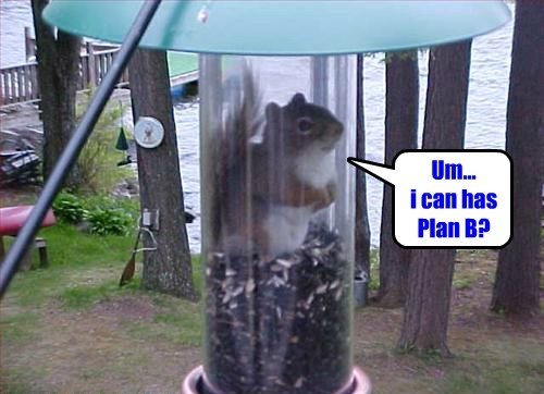 whoops plan b squirrel trapped - 8360120064