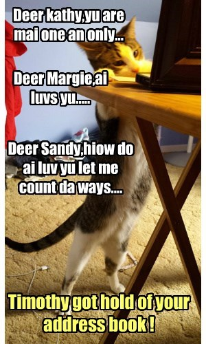 Deer kathy,yu are mai one an only... Deer Margie,ai luvs yu..... Deer Sandy,hiow do ai luv yu let me count da ways.... Timothy got hold of your address book !