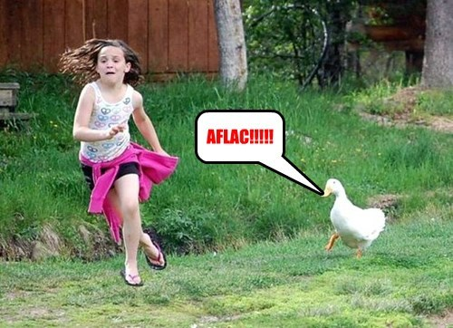Aflac chase goose angry - 8360863232