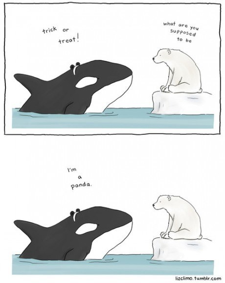 halloween costumes,halloween,critters,killer whale,whales,web comics