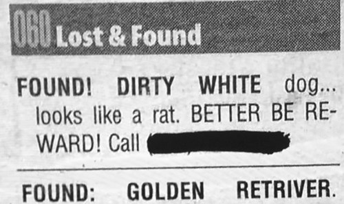 lost and found newspaper pets - 8361276672