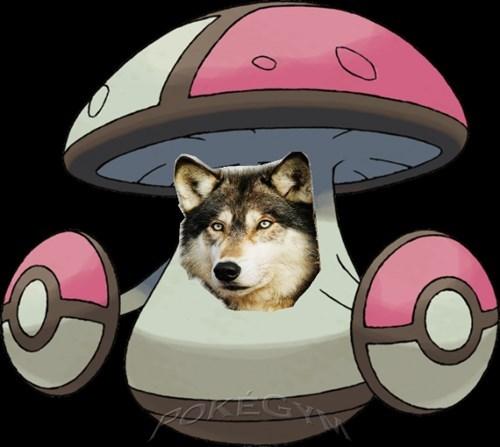 amoongus,Pokémon,puns,the wolf among us