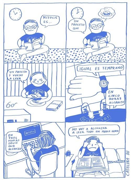 bromas viñetas - 8362003200