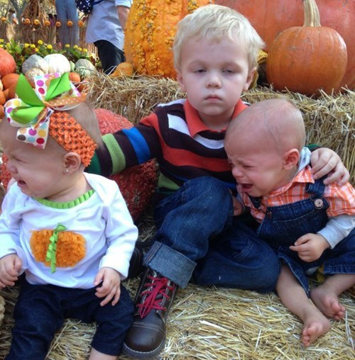baby kids halloween family photo parenting pumpkin patch crying