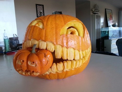 pumpkins,halloween,carving,g rated,win